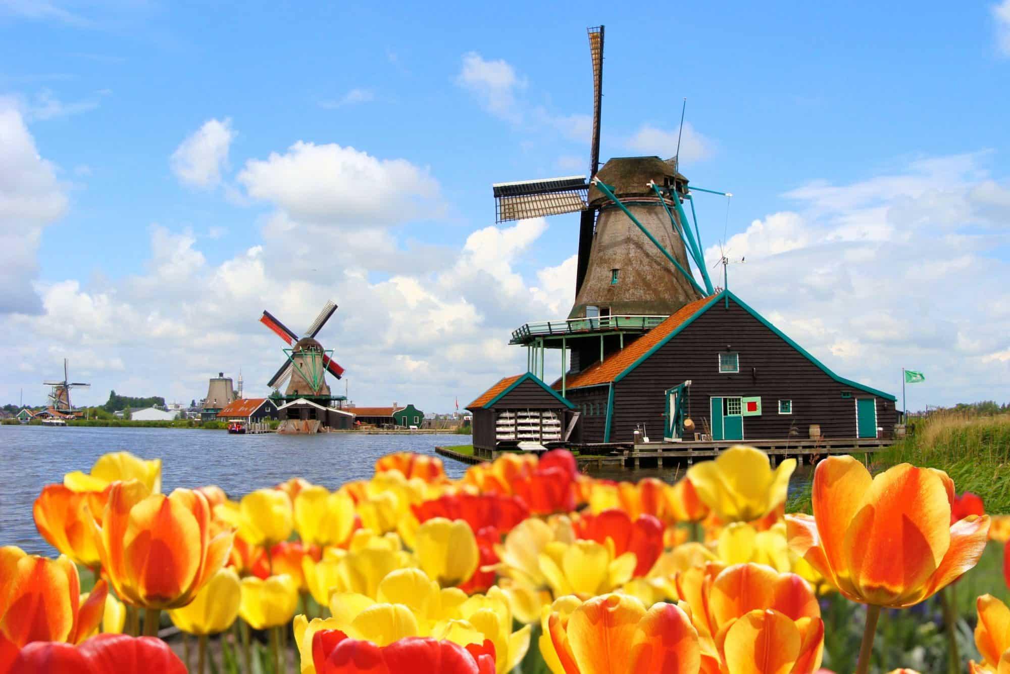 Holland Battlefields