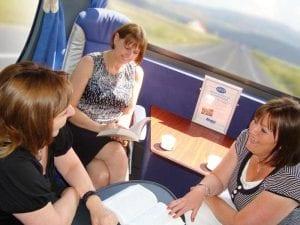 Silver Service Travel - Battletours