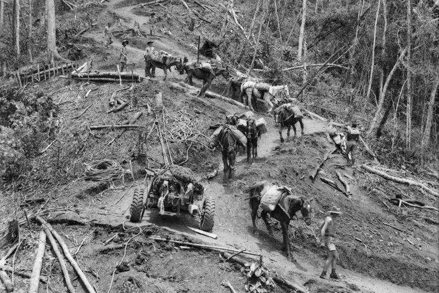 Australian troops navigate the Kokoda track during WWII - Trek Kokoda Tour